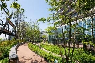 大規模な屋上・壁面緑化の例:豊島区役所 豊島の森